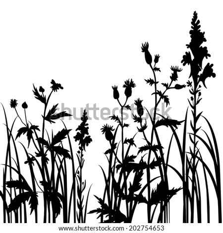 Silhouettes  of flowers and grass, hand drawn illustration
