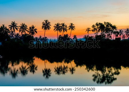 silhouettes of palm trees at dawn near a lake - stock photo