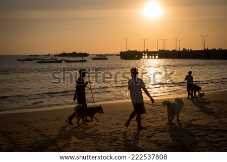 silhouettes of people walking their dogs on the beach at sunset, with fishing boats near a jetty beyond. - stock photo