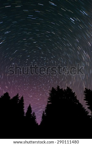 Silhouettes of pine-trees on a background star trail - stock photo