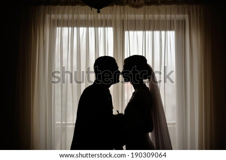 silhouettes of the bride and groom on the background of a window - stock photo