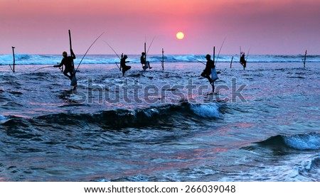 Silhouettes of the traditional stilt fishermen at sunset near Galle in Sri Lanka - stock photo