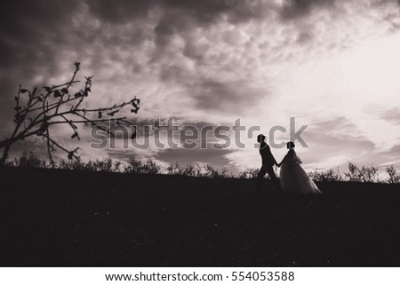 silhouettes of young bride and groom on  the background of sky