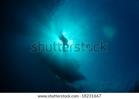 Silhoutte of diver