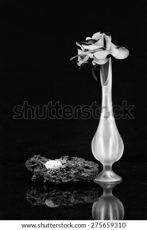 Silk Red Rose in a Tall Bud Vase with Granite and Lava Rock in Black and White - stock photo