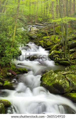 Silky stream in the Smoky Mountains on a foggy spring morning - stock photo