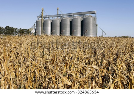Silo grains - stock photo