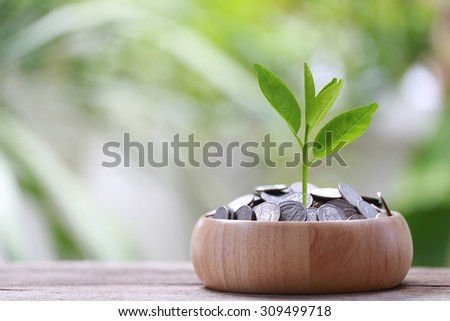 silver coin in wooden bowl is placed on a wood floor and treetop growing with colorful bokeh background for business concept image.