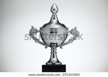 Silver Cup runner up on a light background - stock photo