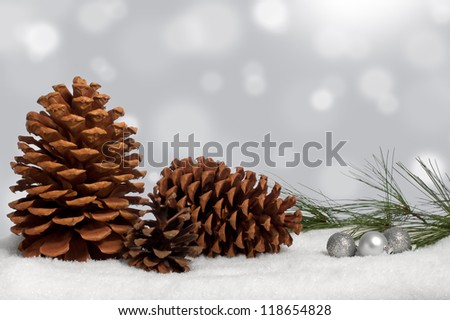 Silvery pine cone Christmas display