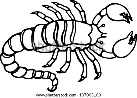 Simple black and white line drawing of a scorpion.