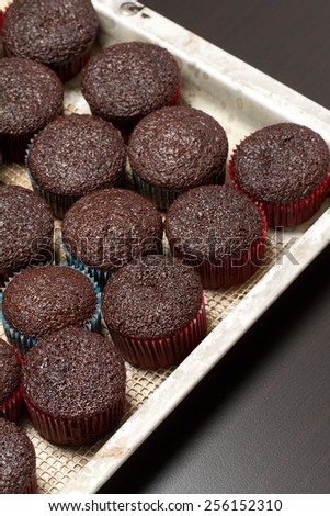 Simple homemade chocolate muffins - stock photo