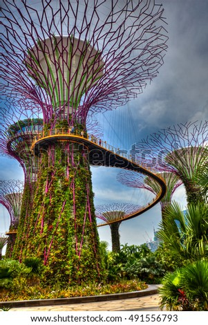 SINGAPORE, 4 April 2016 - Supertree at Singapore's famous Gardens by the Bay