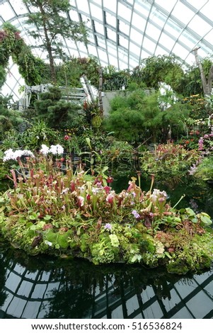 garden by the bay august 2016