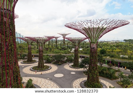 singapore aug 5 day view of the super trees grove at gardens by the