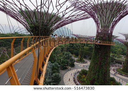 singapore 27 aug supertree grove garden by the bay in singapore on 27