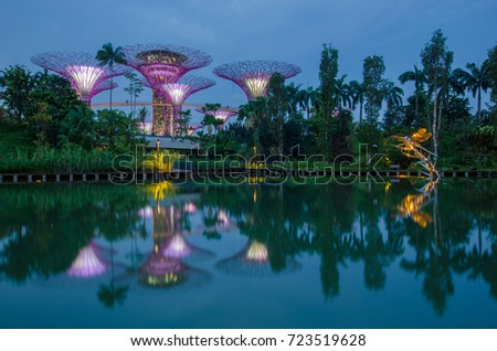 singapore 20 august 2014 a sunset view of the supertrees grove and marina bays