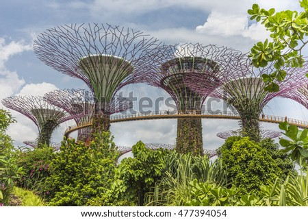 singapore august 29 2016 supertree gardens by the bay