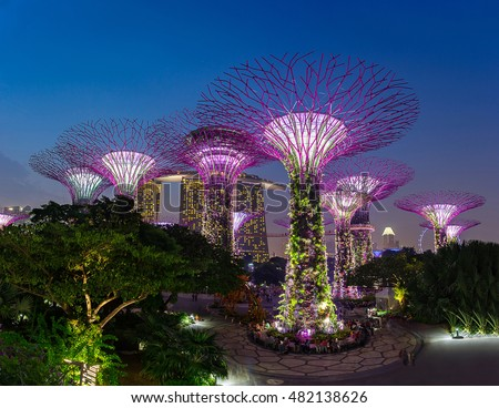 singapore august 28 2016 supertrees at gardens by the bayfantastic light - Garden By The Bay Music