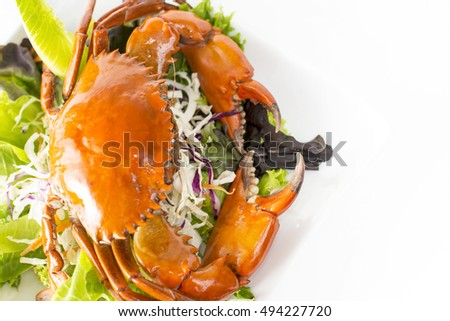 Singapore Chilli Mud Crab