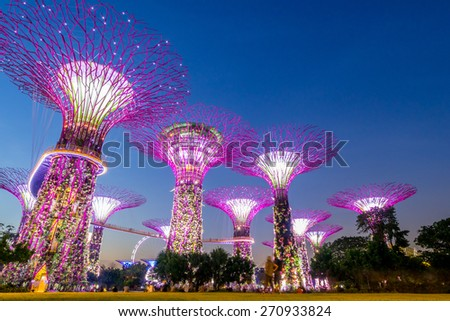 Singapore City, Singapore - June 23, 2014: Supertree Grove in the Graden by the Bay in Singapore. - stock photo
