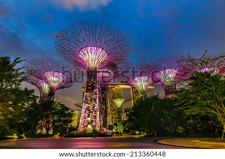SINGAPORE -DEC 31: Night view of Supertree Grove at Gardens by the Bay on Dec 31, 2013 in Singapore. Spanning 101 hectares of reclaimed land in central Singapore, adjacent to the Marina Reservoir - stock photo