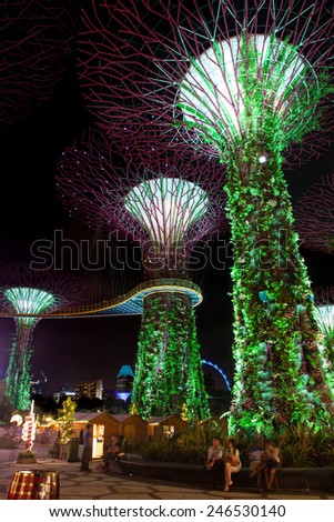 SINGAPORE - DECEMBER 9: Visitors gather around the Supertree Grove at Gardens by the Bay Dec. 9, 2014. The nightly dazzling myriad of light and laser displays is a major attraction in Marina Bay.