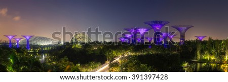 SINGAPORE - FEB 26, 2016: Panorama view of Supertree Grove at sunrise in Gardens by the Bay. - stock photo