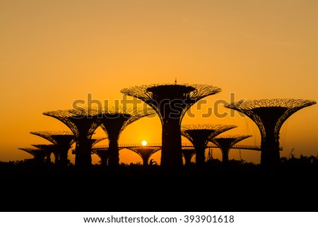 SINGAPORE - FEB 26, 2016: Silhouette of Supertree Grove at sunrise in Gardens by the Bay. - stock photo