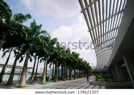 SINGAPORE - FEBRUARY 26: Urban landscape with palm trees on February 26, 2013. Modern skyscrapers of business district Marina Bay Sands at most financial developing Asian city. Singapore