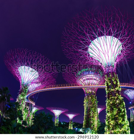 SINGAPORE - JULY 10: Night view of Supertree Grove at Gardens by the Bay on July 10, 2015 in Singapore. Singapore is a world famous tourist city with highly developed economic infrastructure. - stock photo
