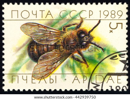 SINGAPORE JUNE 26, 2016: A stamp printed in USSR (Russia) shows a male honey bee, known as a drone, circa 1989. - stock photo