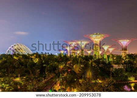 SINGAPORE - JUNE 26: Night view of Supertree Grove at Gardens by the Bay on JUNE 26, 2014 in Singapore. Spanning 101 hectares of reclaimed land in central Singapore, adjacent to the Marina Reservoir. - stock photo