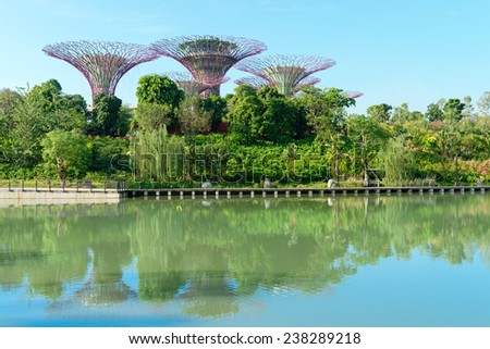 SINGAPORE - 01 JUNE 2013: Supertrees in popular tourist attraction in Singapore the Gardens by the Bay park with reflection in a  lake.  - stock photo