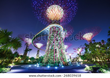 SINGAPORE - March 13, 2013: Urban landscape of Singapore. Night view of Supertree Grove at Gardens by the Bay. - stock photo