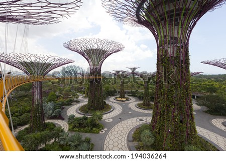 singapore march 27 view from the walkway on the supertree grove at gardens by
