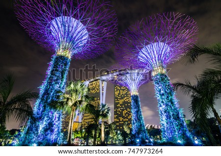 Singapore  May 13, 2017: Beautiful Night At Garden By The Bay With Supertree