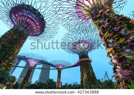 """SINGAPORE -MAY 21:Night view of Supertree at Gardens by the Bay on May 21, 2016. It is part of strategy by the Singapore government to transform Singapore from a """"Garden City"""" to a """"City in a Garden"""". - stock photo"""