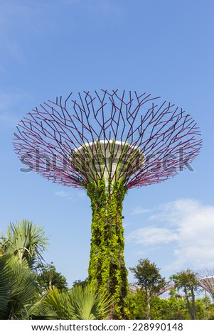 Singapore - October 23, 2014: Gardens by the Bay brings to life vision of creating a City in a Garden. The Gardens captures the essence of Singapore with the perfect environment. - stock photo