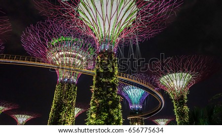 singapores garden by the bay light show