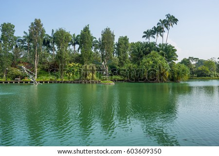 Garden By The Bay Water Park bay east garden stock images, royalty-free images & vectors