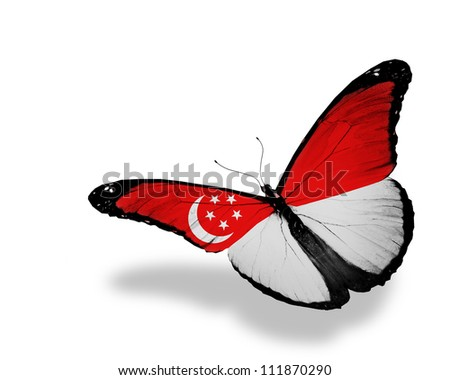 Singaporean flag butterfly flying, isolated on white background - stock photo