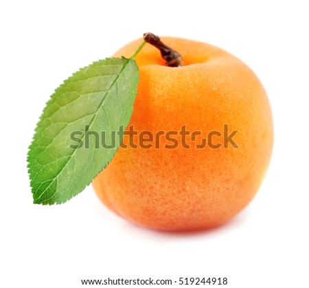 Single apricot with leafs isolated on white