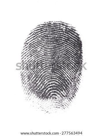 Single black fingerprint isolated on white  - stock photo