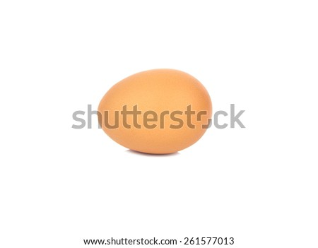 Single brown chicken egg isolated on white background.