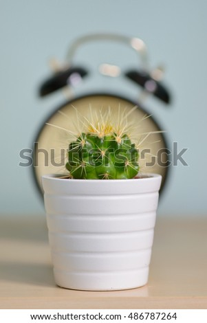Single cactus and alarm clock warning