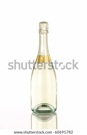 Single champagne bottle - stock photo