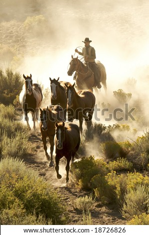 Free dating sites to find cowboys