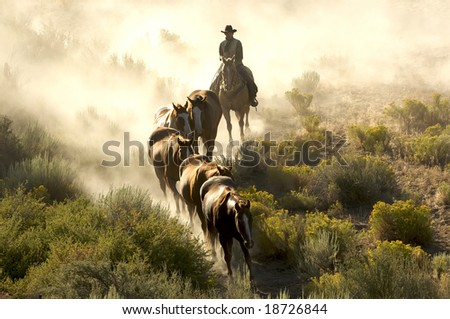 Single cowboy guiding a line of horses through the desert - stock photo