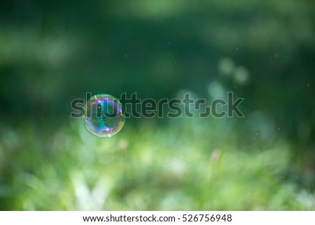 Single floating soap bubble among de-focused green grass an a swarm of tiny insects that are blurs in the air